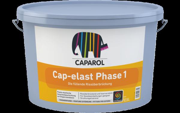 065024_Cap-elast_Phase_1_RU