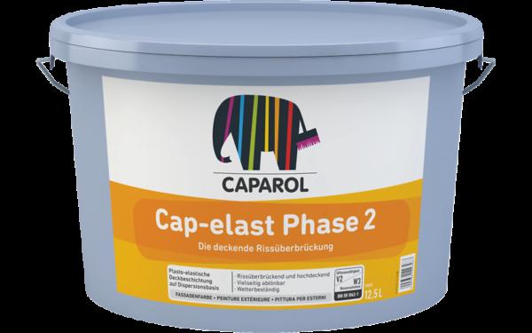 065026_Cap-elast_Phase_2_RU